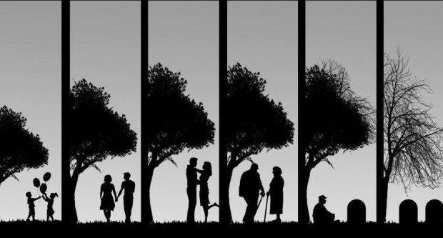 Hayatın Anlamı