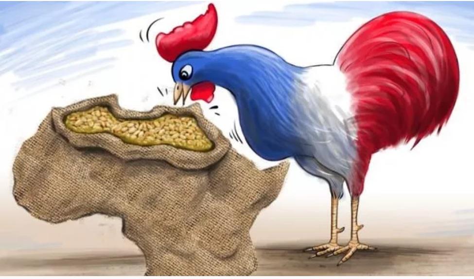 Bu Fransa Afrika'dan Vazgeçemez!